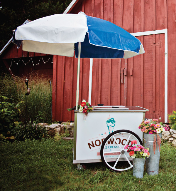 ice cream travel cart